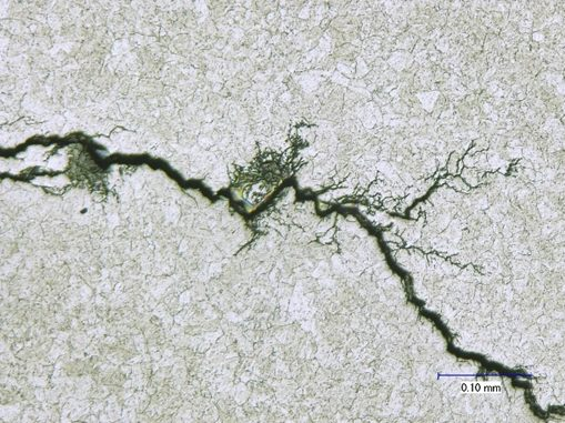 "Branched crack with ""lightning bolt"" appearance may indicate stress corrosion cracking."
