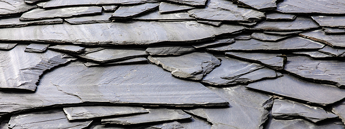 Predicting the Thermal Maturity of Shale